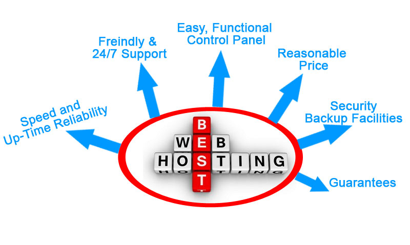 NIW (02) - Finding a Cheap and Reliable Web Hosting