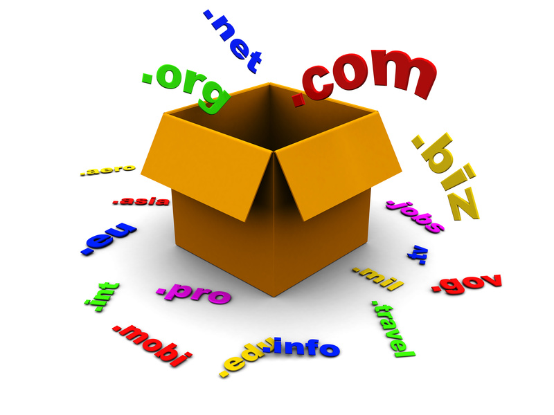 NIW (01) - How to Chose a Domain Name for Your Blog or Online Business