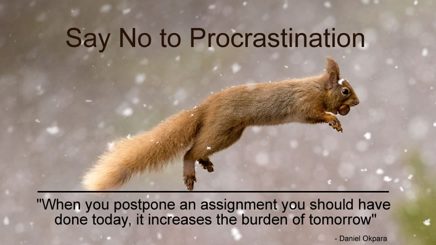 Procrastination is a Graveyard to Every Good Intention